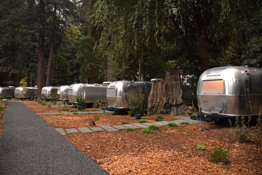 Arty Airstream Accommodations at AutoCamp
